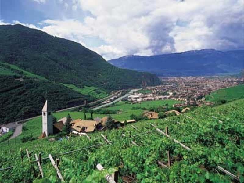 Cantina produttori bolzano grappe vini e prodotti tipici for Azienda di soggiorno bolzano